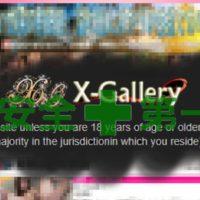 安全な利用を考える人ほど最適なのがX-Gallery(エックスギャラリー)