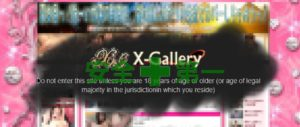 危険を回避したい人が選ぶべきはX-Gallery(エックスギャラリー)でした