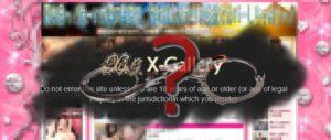 結論として、X-Gallery(エックスギャラリー)利用は違法ではない