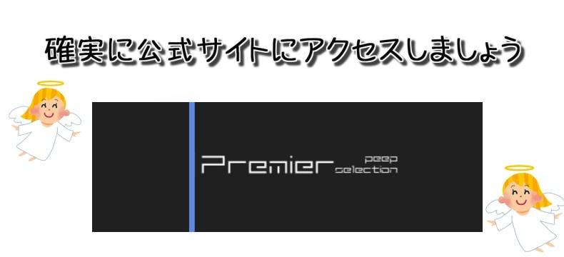 Premier Peep Selection(プレミアピープセレクション)で安全にクレジットカード決済する際の注意点